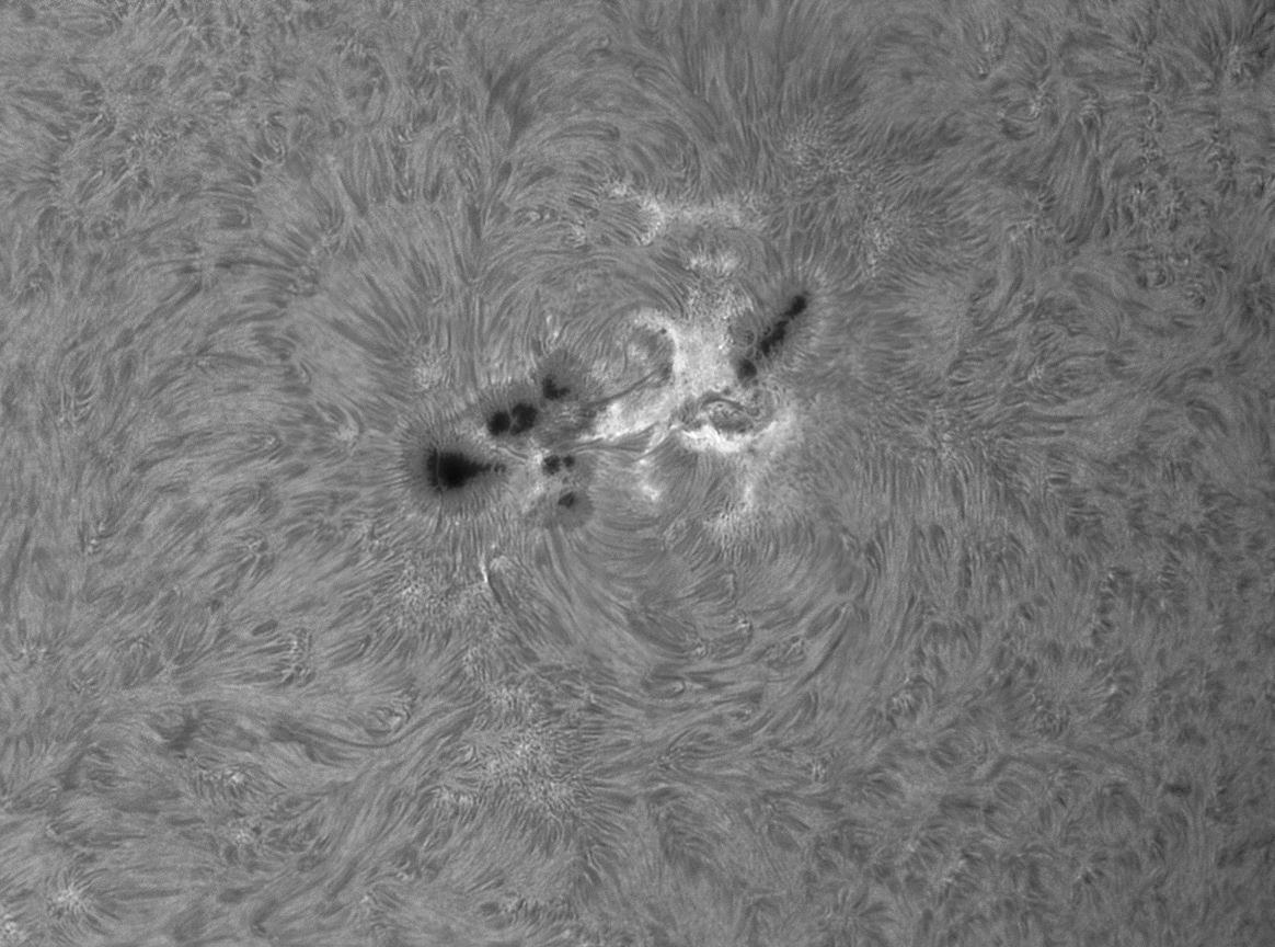 Saulės dėmė AR1339 iš arčiau. Alano Friedmano nuotr.